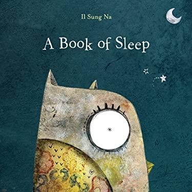 A Book of Sleep 9780375862236