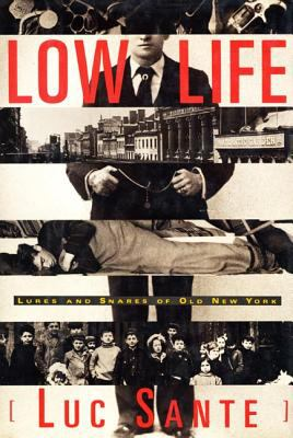 Low Life: Lures and Snares of Old New York 9780374528997