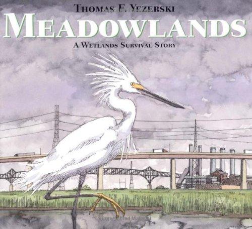 Meadowlands 9780374349134
