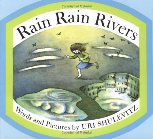 Rain Rain Rivers 9780374461959