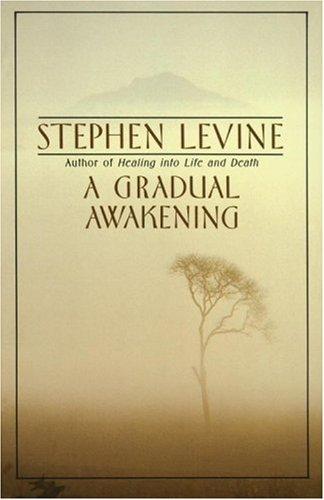 A Gradual Awakening 9780385262187