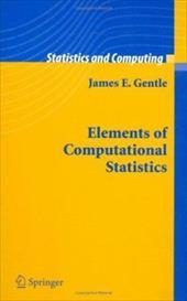 Elements of Computational Statistics