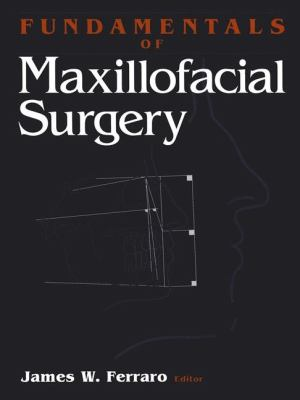 Fundamentals of Maxillofacial Surgery 9780387947372