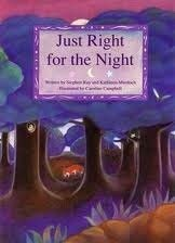 Just Right for the Night Hardcover Stephen Ray