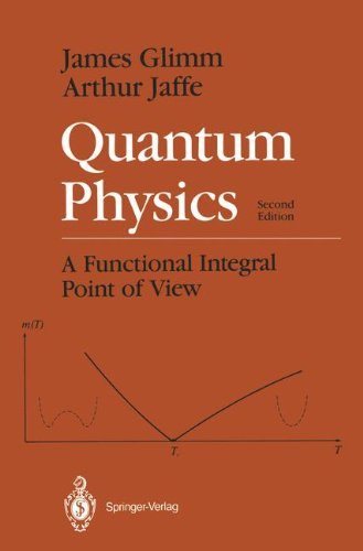 Quantum Physics: A Functional Integral Point of View - 2nd Edition
