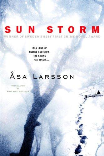 Sun Storm 9780385340786