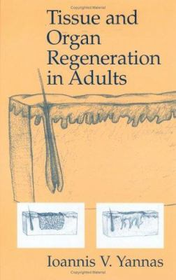 Tissue and Organ Regeneration in Adults 9780387952147