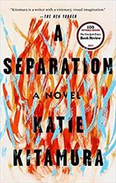 A Separation: A Novel 26679519