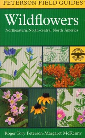 A Field Guide to Wildflowers: Northeastern and North-Central North America 9780395911723