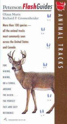 Animal Tracks 9780395829974