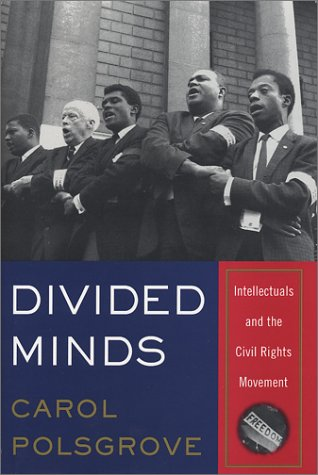Divided Minds: Intellectuals and the Civil Rights Movement 9780393020137