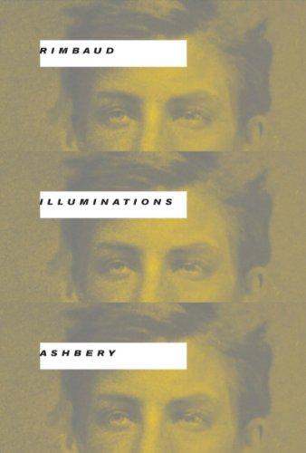 Illuminations 9780393076356