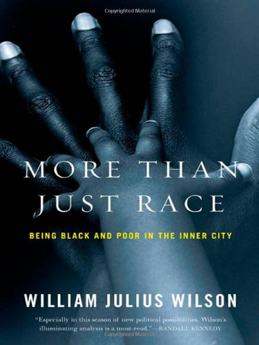 More Than Just Race: Being Black and Poor in the Inner City 9780393067057