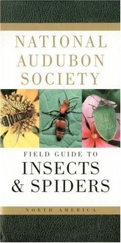 National Audubon Society Field Guide to North American Insects and Spiders 9780394507637