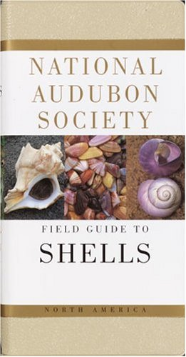 National Audubon Society Field Guide to North American Seashells 9780394519135