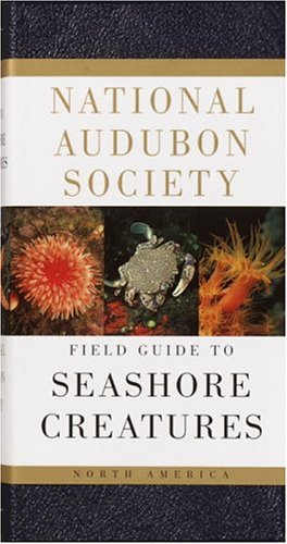 National Audubon Society Field Guide to North American Seashore Creatures 9780394519937