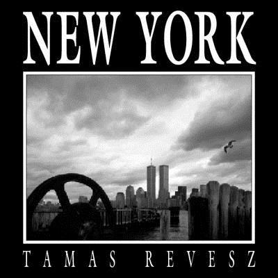 New York 9780393050233