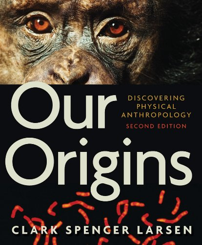Our Origins: Discovering Physical Anthropology 9780393934984