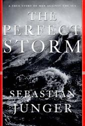 The Perfect Storm 1195005