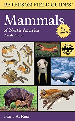 Peterson Field Guide to Mammals of North America 9780395935965