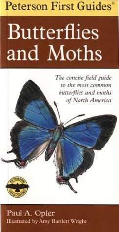 Peterson First Guide to Butterflies and Moths 9780395906651