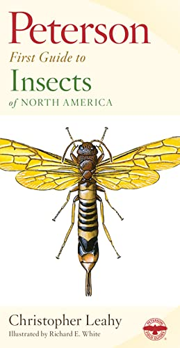 Peterson First Guide to Insects 9780395906644