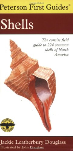 Shells of North America 9780395911822