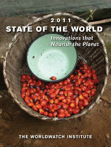 State of the World: Innovations That Nourish the Planet 9780393338805