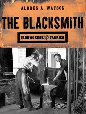The Blacksmith: Ironworker and Farrier 9780393320572