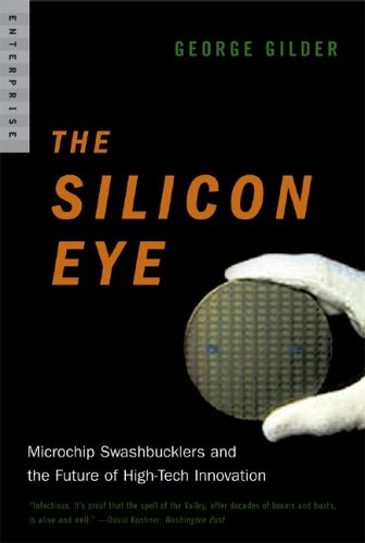 The Silicon Eye: Microchip Swashbucklers and the Future of High-Tech Innovation 9780393328417