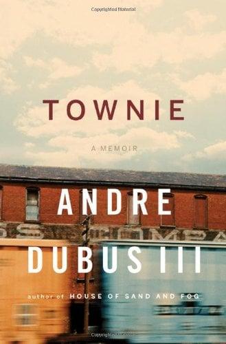 Townie 9780393064667