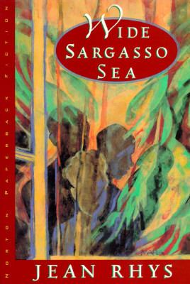 Wide Sargasso Sea 9780393308808