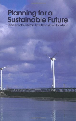 Planning for a Sustainable Future 9780415234085