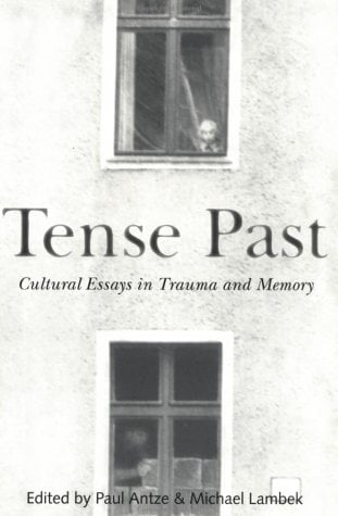 Tense Past: Cultural Essays in Trauma and Memory 9780415915632