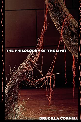The Philosophy of the Limit 9780415902397