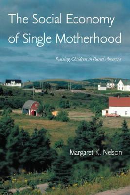 The Social Economy of Single Motherhood: Raising Children in Rural America 9780415947787