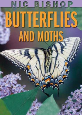 Nic Bishop Butterflies and Moths 9780439877572