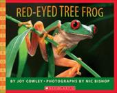 Red-Eyed Tree Frog 1380612