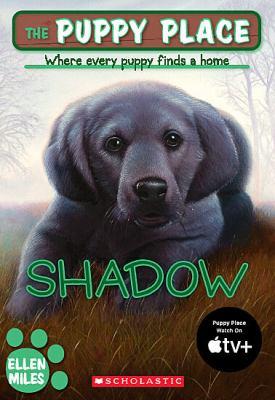 Shadow 9780439793810