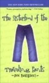 The Sisterhood of the Traveling Pants 1387782