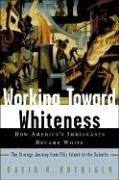 Working Toward Whiteness: How America's Immigrants Became White 9780465070732
