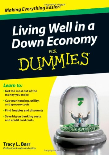 Living Well in a Down Economy for Dummies 9780470401170