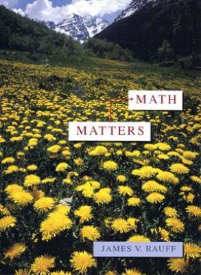 Math Matters 9780471304524