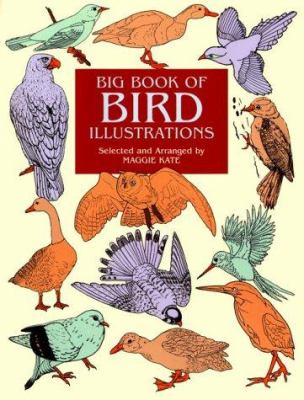 Big Book of Bird Illustrations 9780486412252