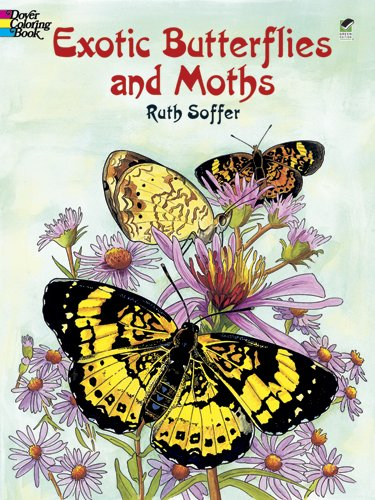 Exotic Butterflies and Moths 9780486423814