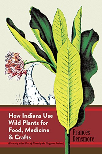 How Indians Use Wild Plants for Food, Medicine & Crafts 9780486230191