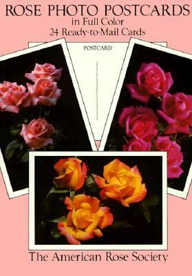 Rose Photo Postcards in Full Color