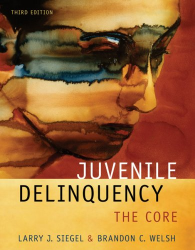 Juvenile Delinquency: The Core 9780495095422