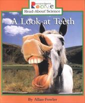A Look at Teeth 1669030