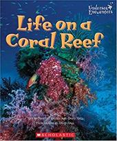 Life on a Coral Reef 1667605